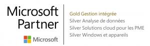 Microsoft competencies - gold+silver